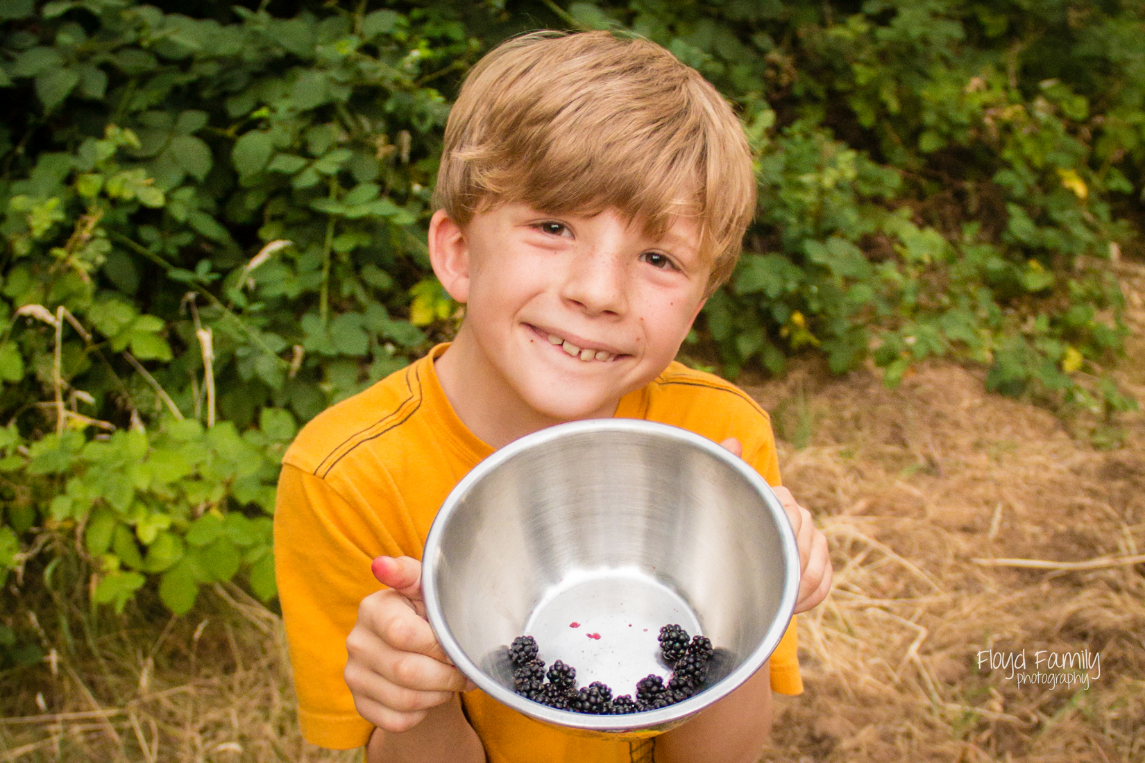 5 best things to do outside with your kids (and the family dog!) this summer   Placerville Everyday Photographer