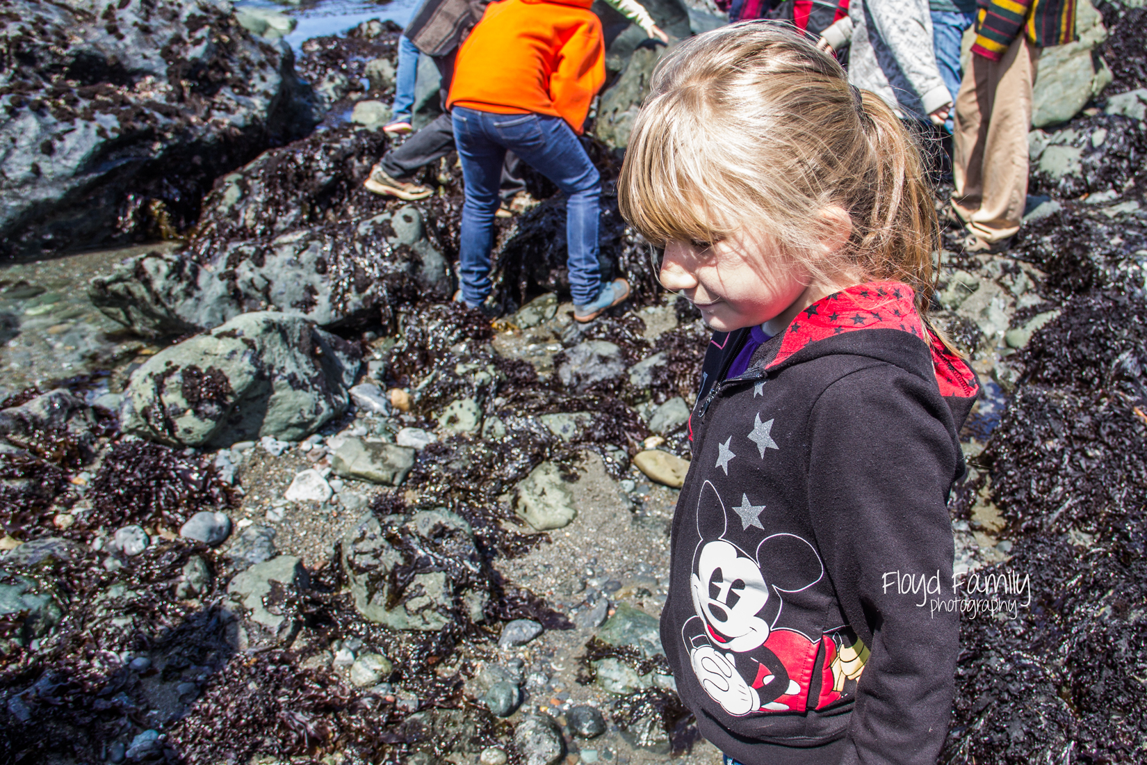 tide pools with kids   Placerville-Children-Photographer