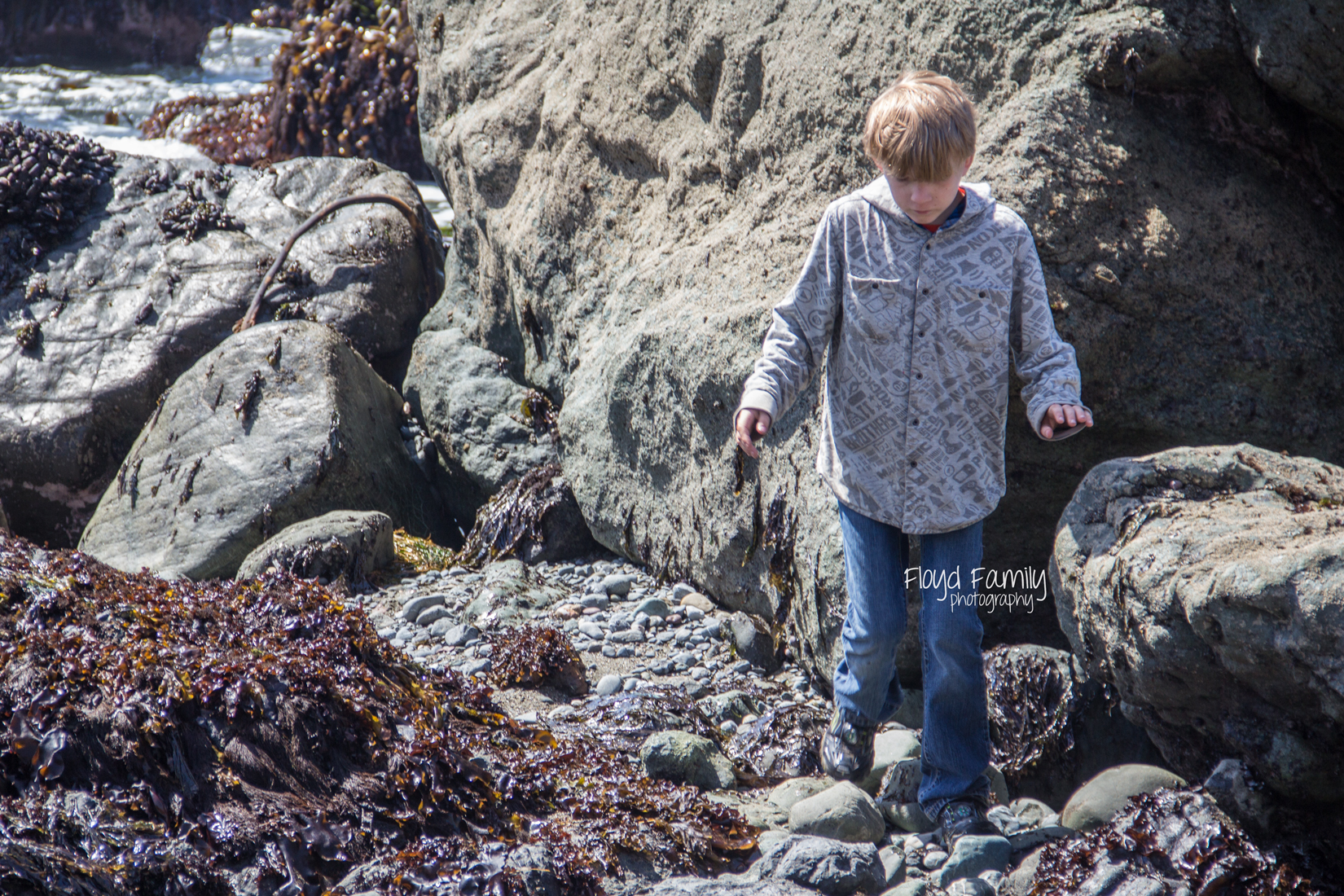 tidal pools with kids   Placerville-Children-Photographer