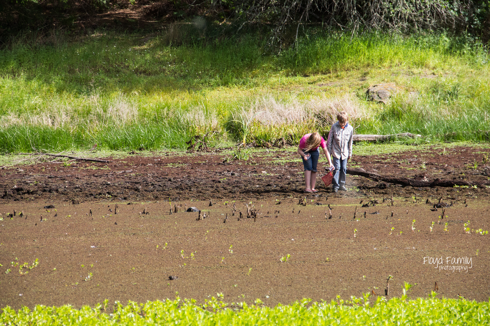 Bull Frog Pond with kids   Placerville-Children-Photographer