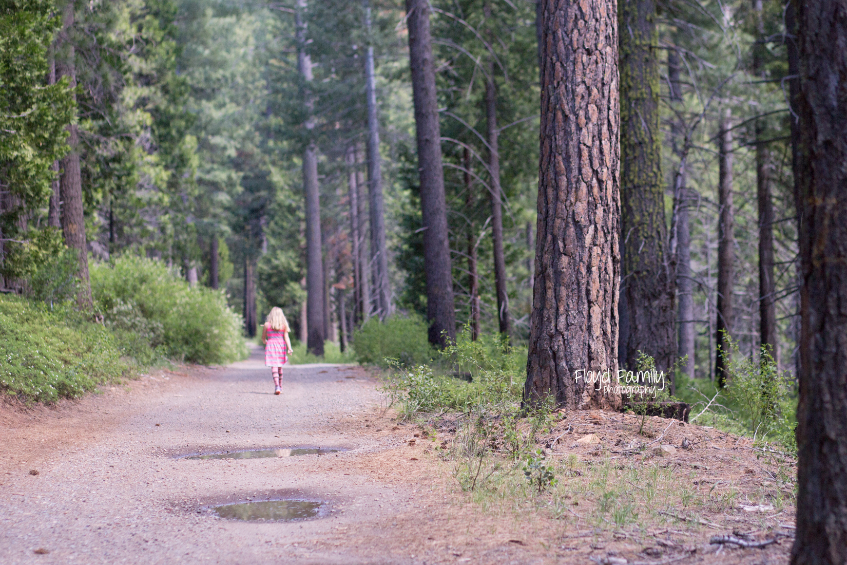 girl walking ahead on trail | Placerville-Family-Photos