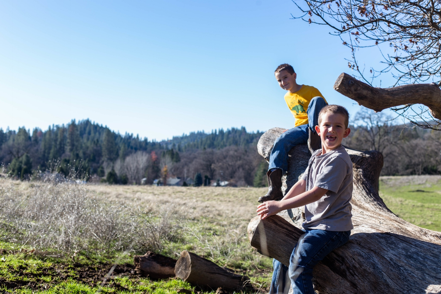 Two boys sitting on a fallen tree log while playing in the pasture