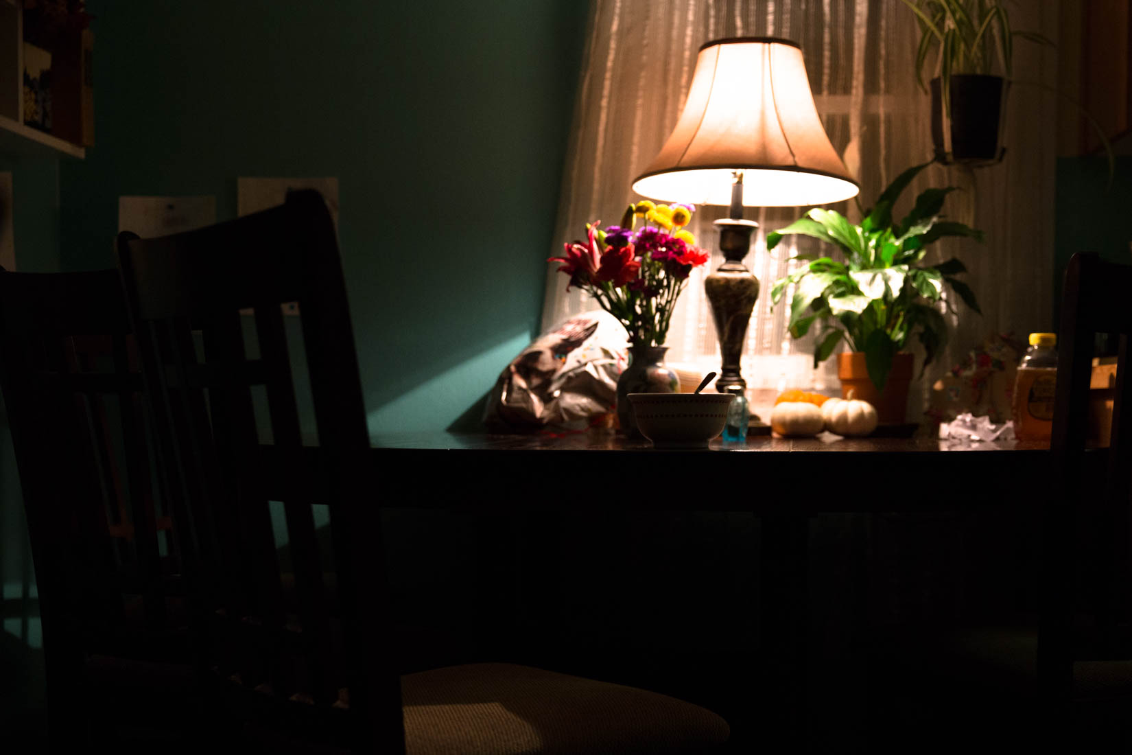 Kitchen table lit with only one lamp. Holding plants and a bowl of cereal early in the morning.