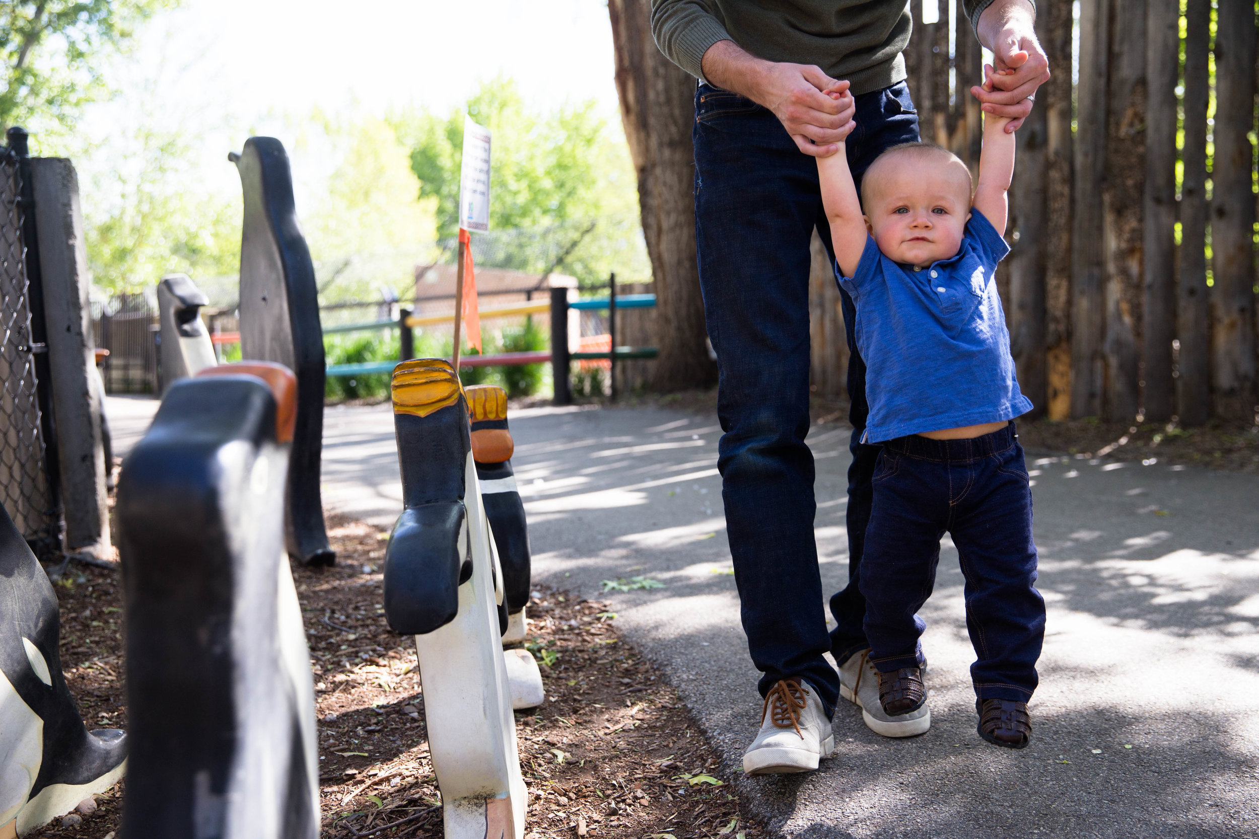 Dad holding son up by the arms as they walk down the path at Zoo Boise. Wooden penguins to the left where you get to describe each one and match the breeds.