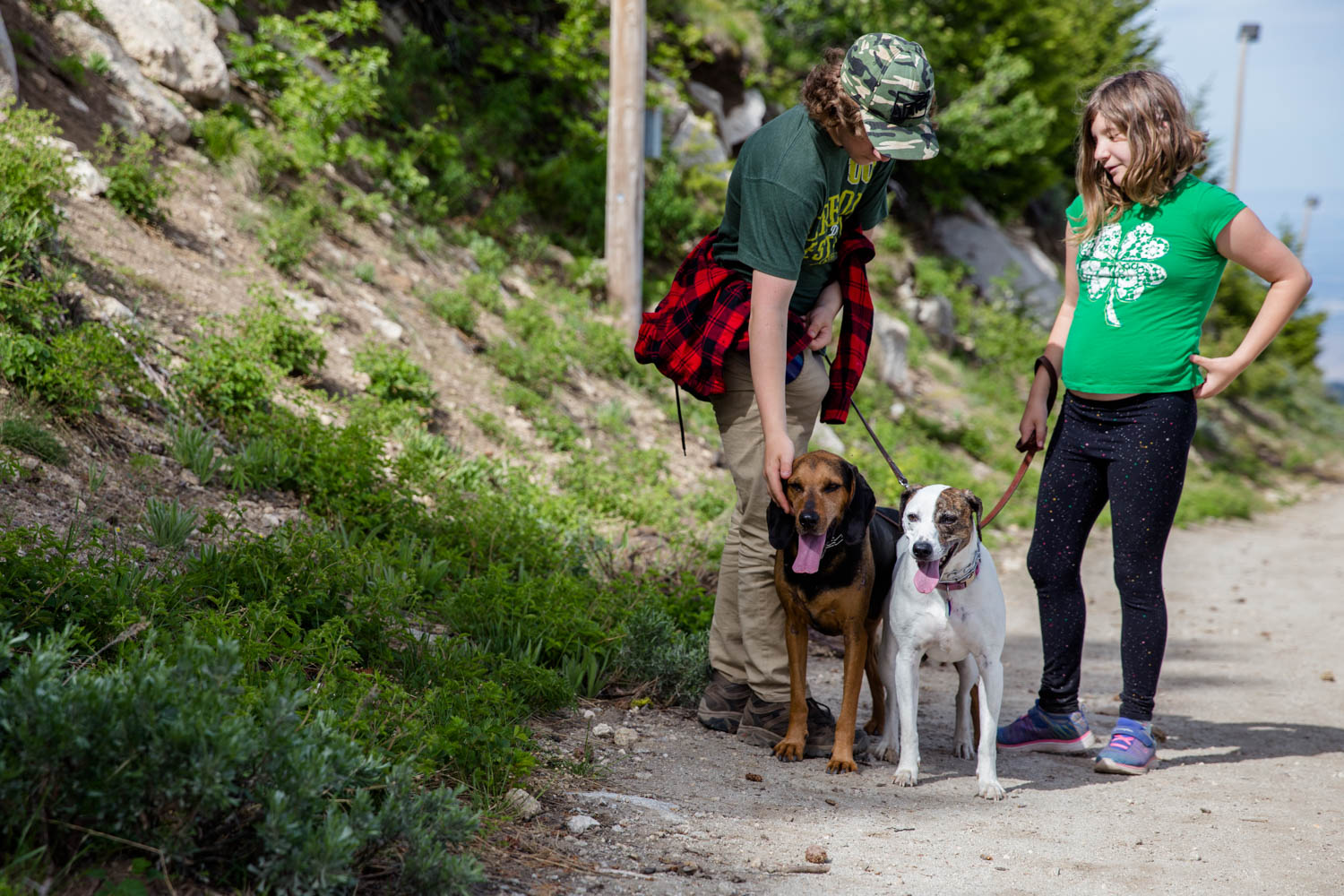 Two kids and their two hounds while on a hike on Bogus Basin Mountain in the summer with family.