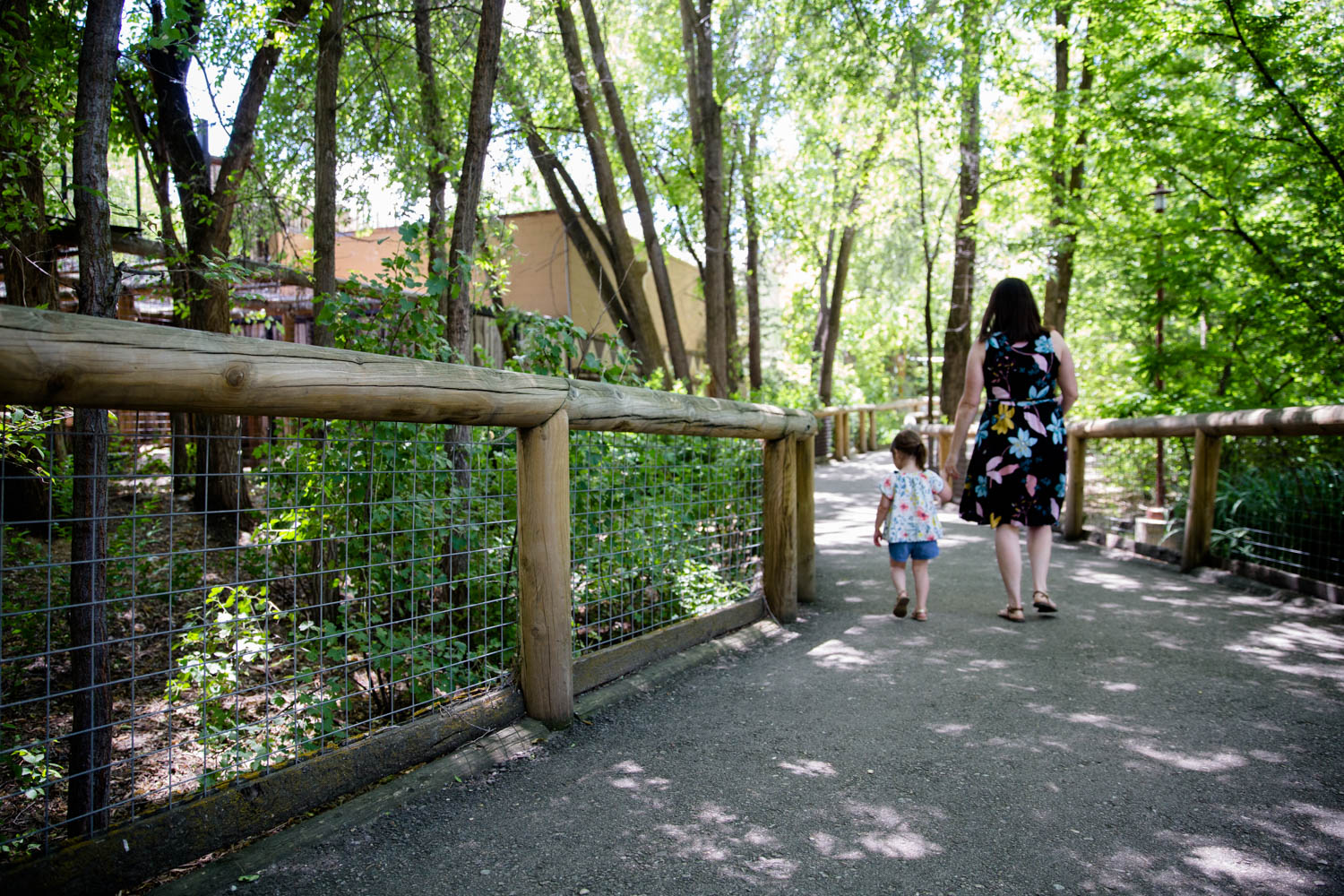 Mom and toddler walking down the pathway in the Zoo Boise area. Walking and holding hands away from camera.