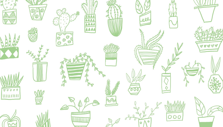 PlantPattern.png