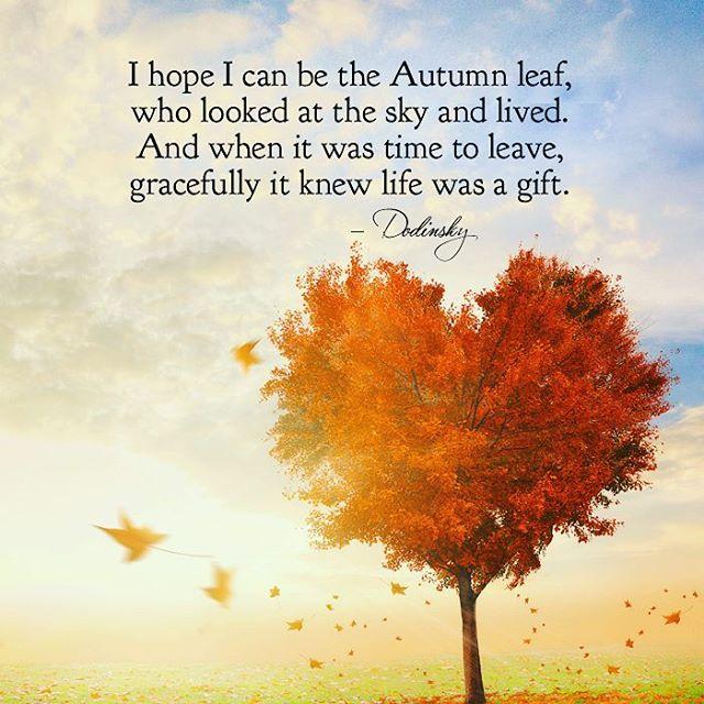 Impressive-Autumn-Quotes.jpg