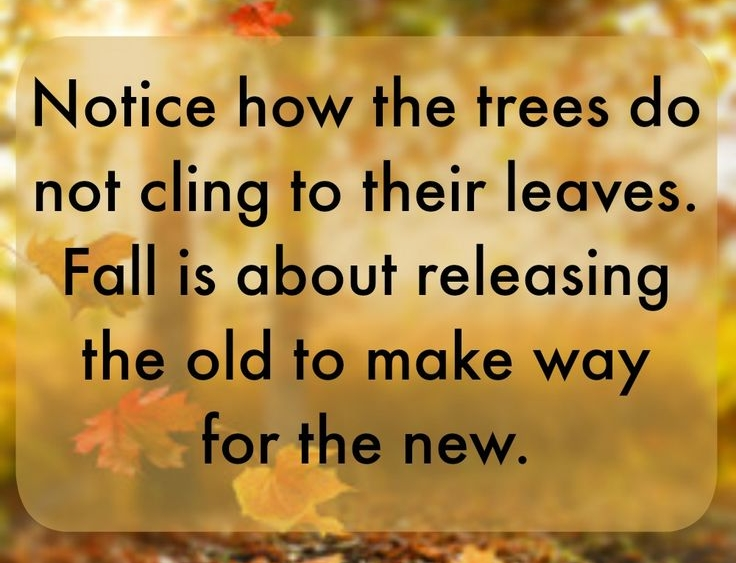 ed828d88336aba9dbfbff570f76d9415--fall-quotes-thanksgiving-quotes.jpg