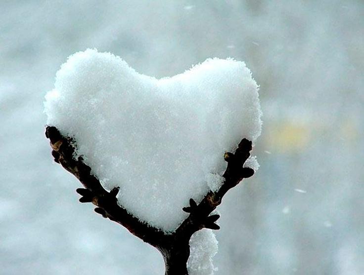 006164fdc3e265db6ed3502fca1c6203--winter-love-winter-white.jpg