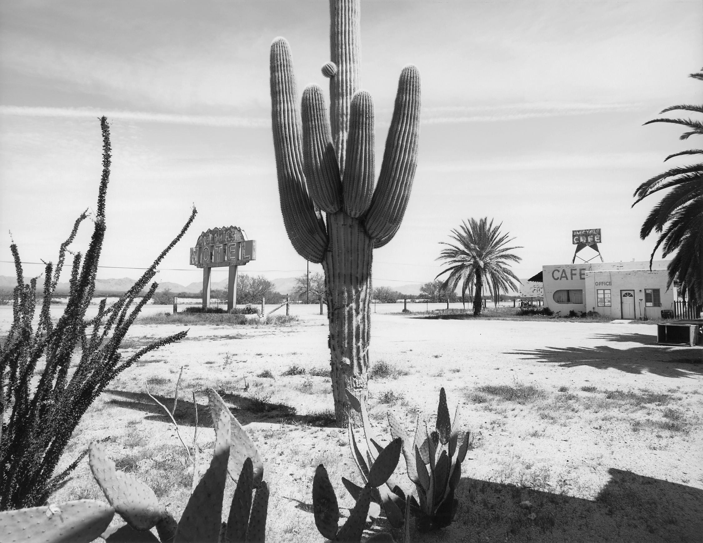 Salome Arizona