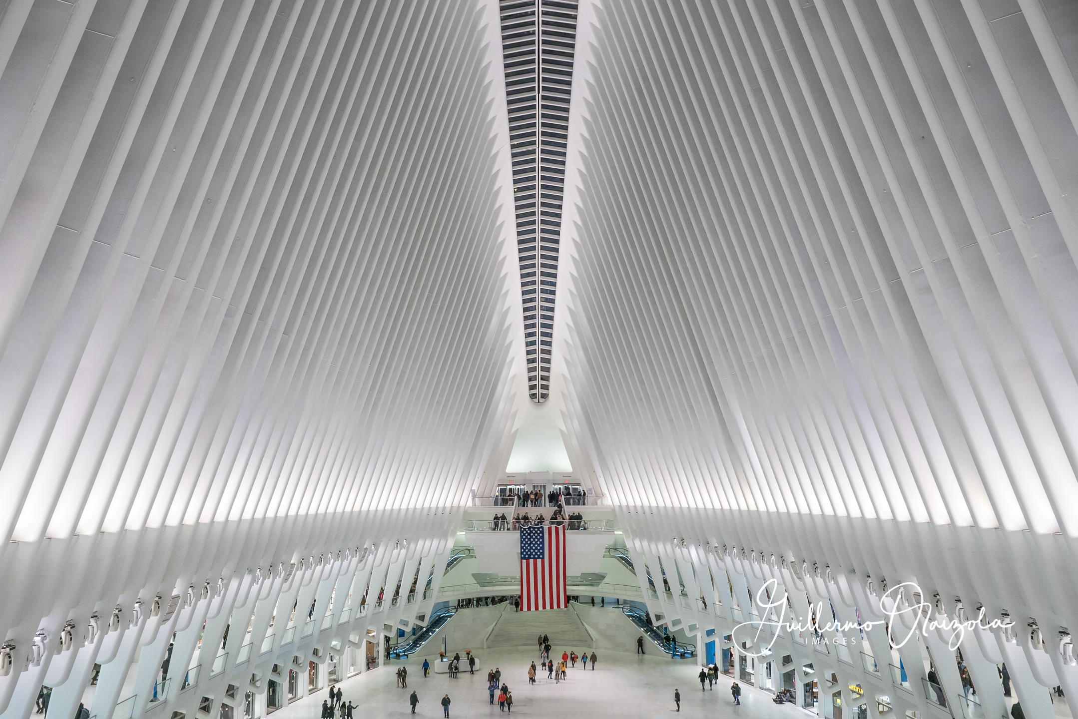 The Oculus - NYC