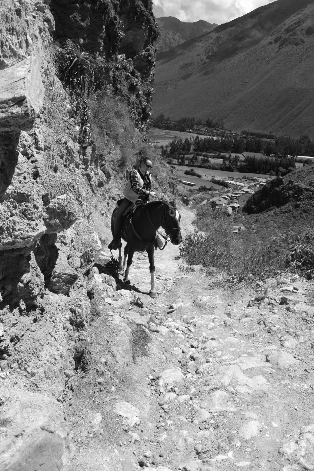 "Ellen riding ""Pilgrim"" Sacred Valley Peru 2016"