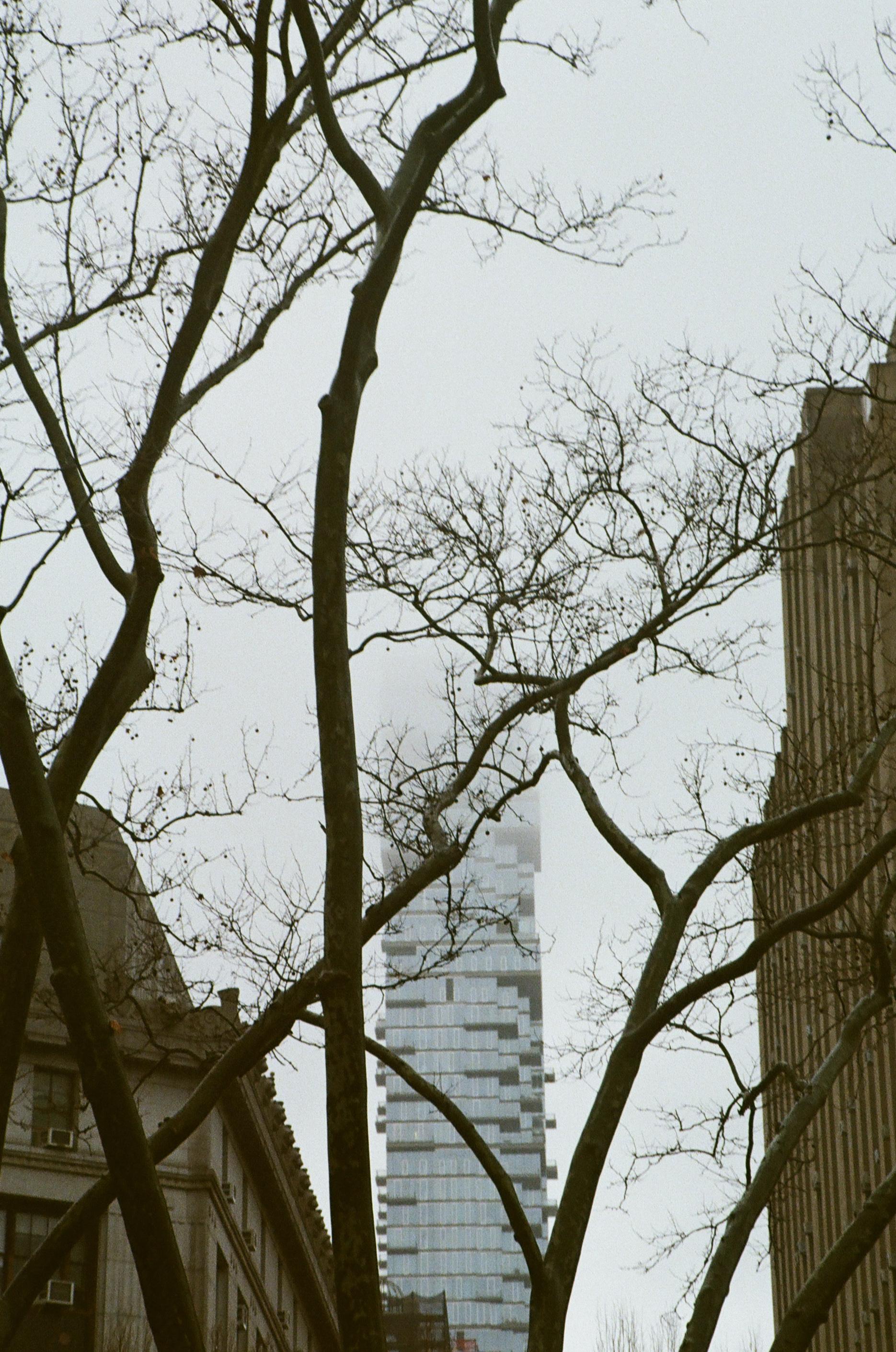 NYC-3.jpg