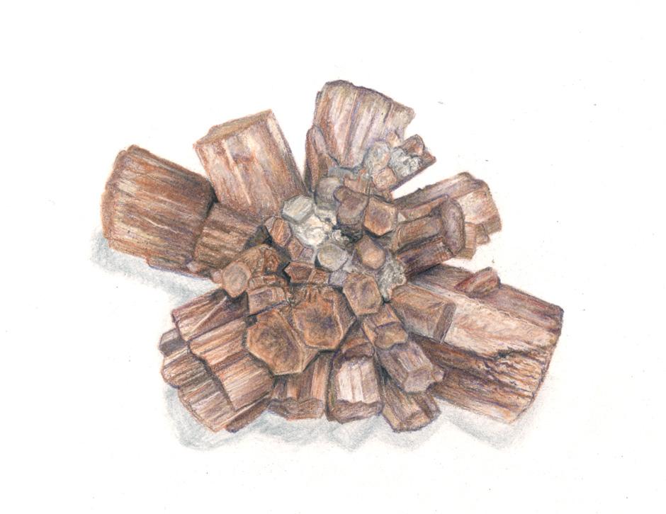 Aragonite in colored pencil