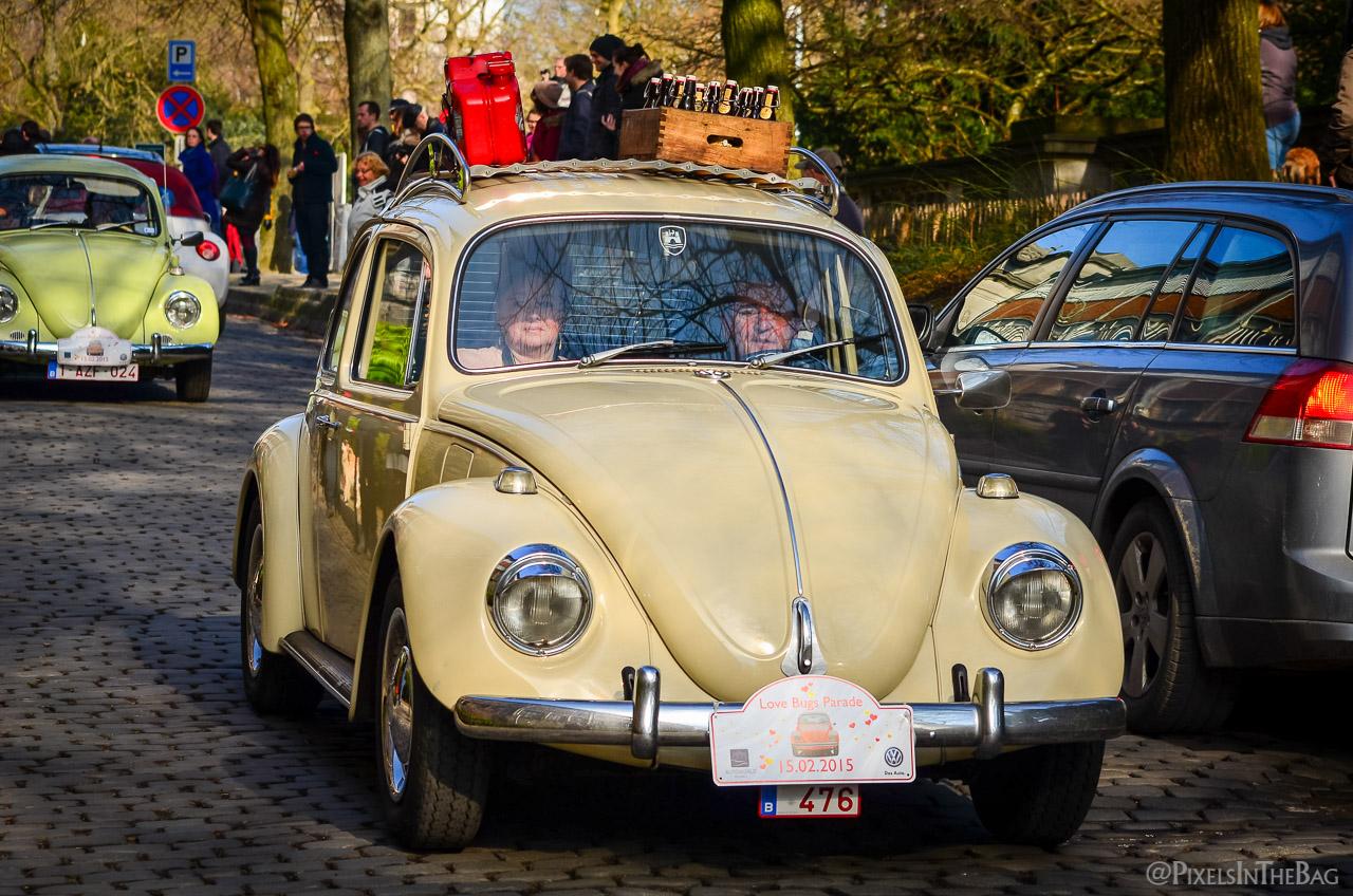 Love Bugs Parade-20