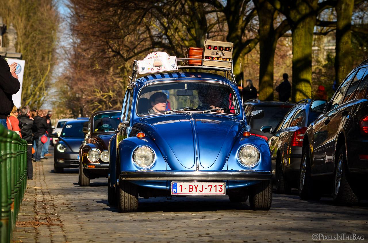 Love Bugs Parade-24