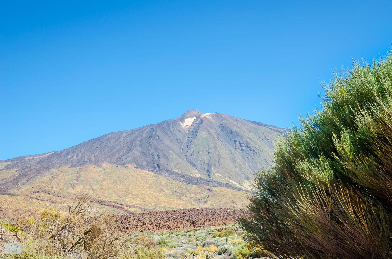 Une vue imprenable sur El Teide