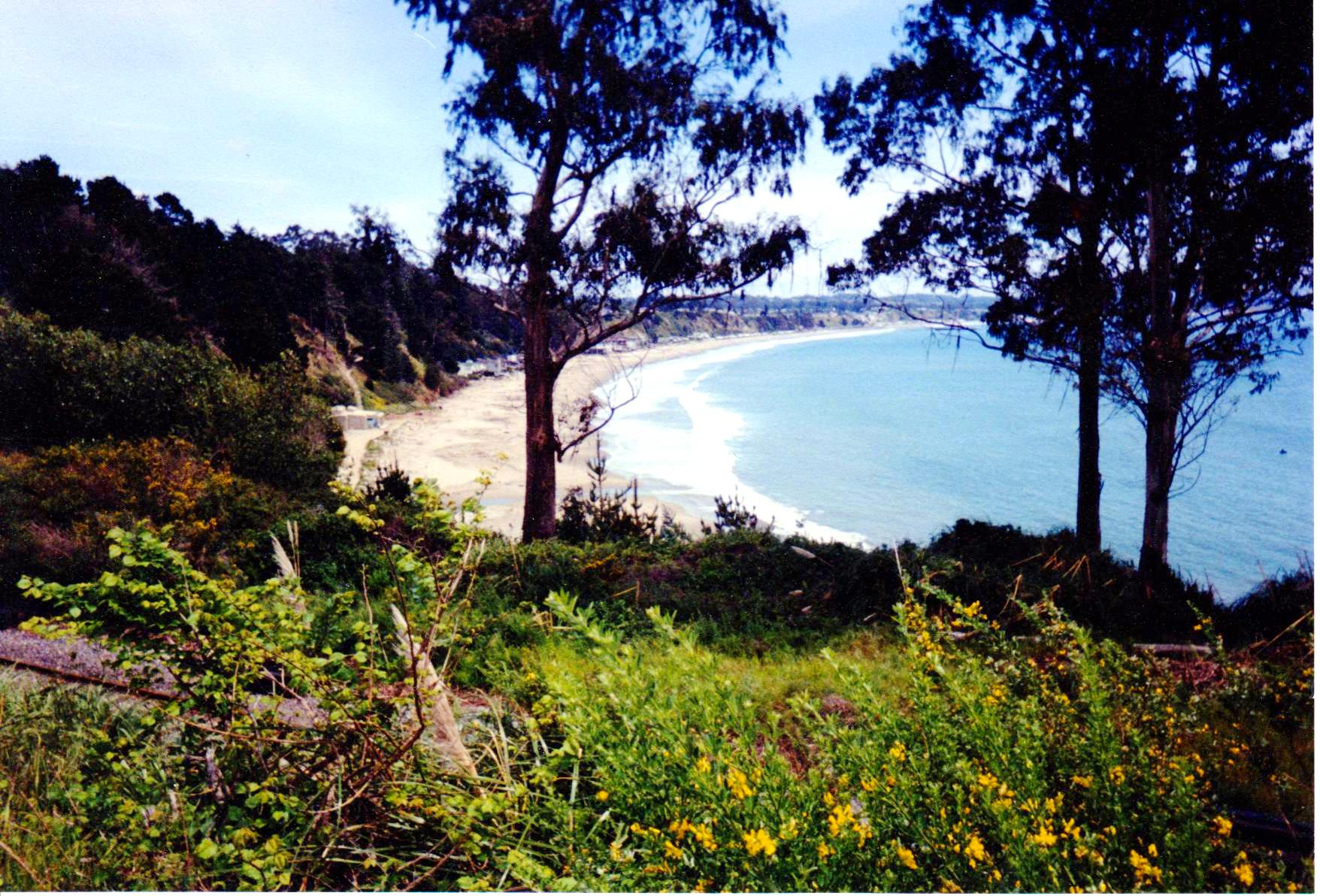 Beautiful Beach Spring Break Road Trip.jpg