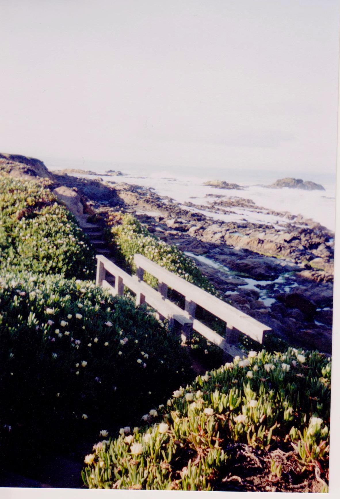 Bright Beach abd Bridge Road Trip.jpg
