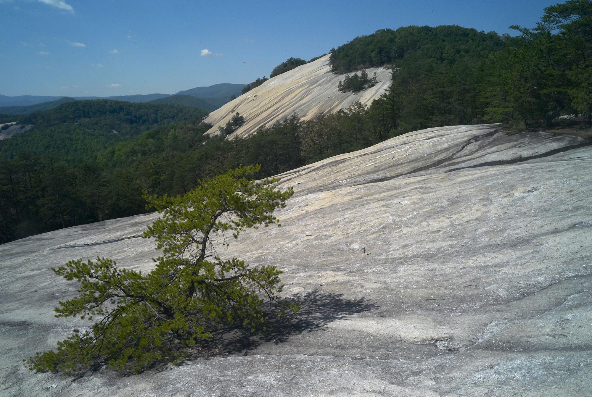 Stone Mtn Summit.jpg