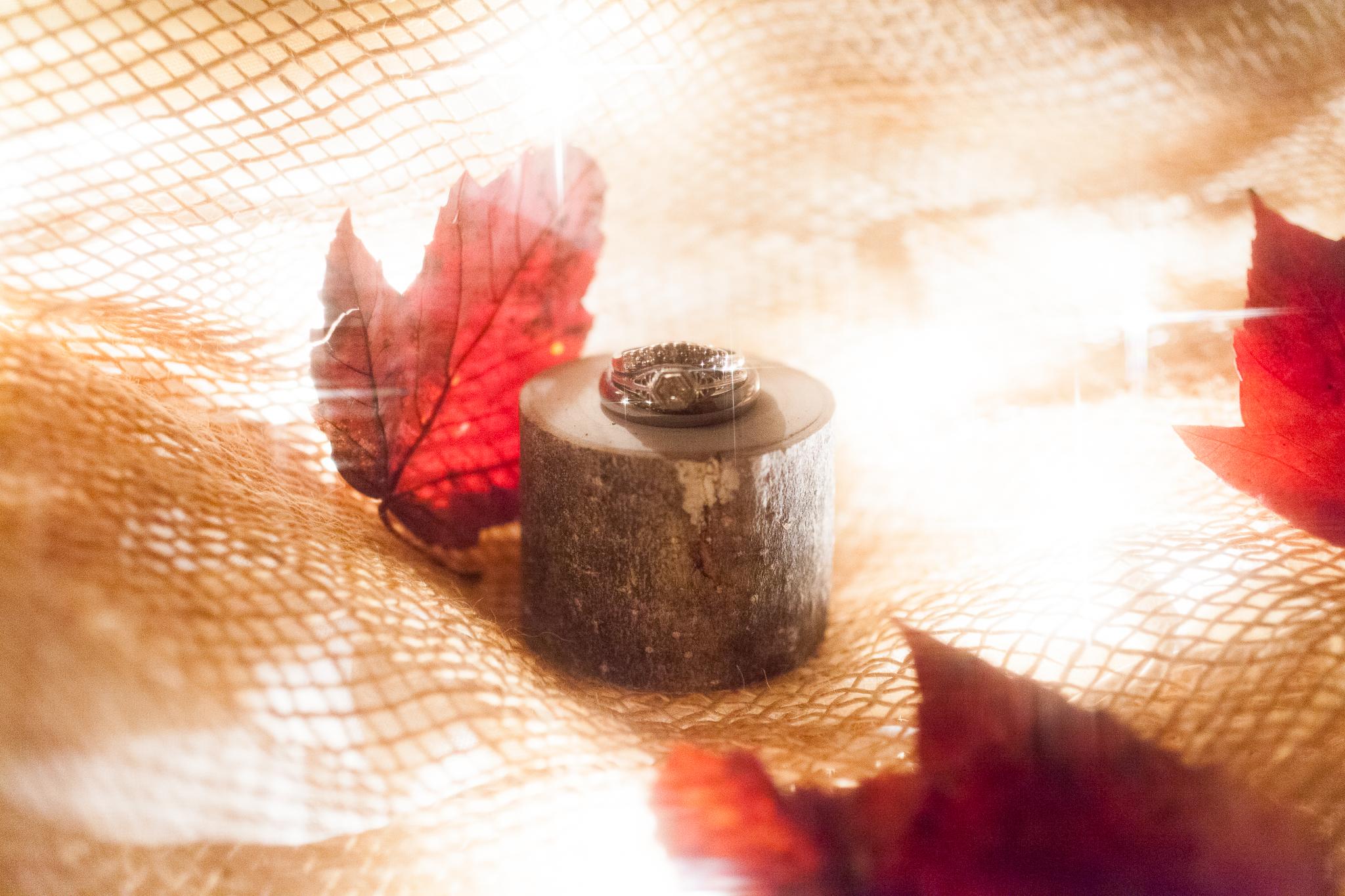 camuglia-whomstudio-chelsea_and_andy-nycphotographer-wedding-brooklyn-buffalo-timberlodge-003-1082.jpg