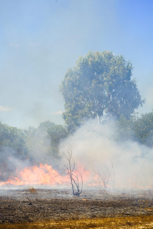Back-burning (photo by Guy Fitzhardinge).