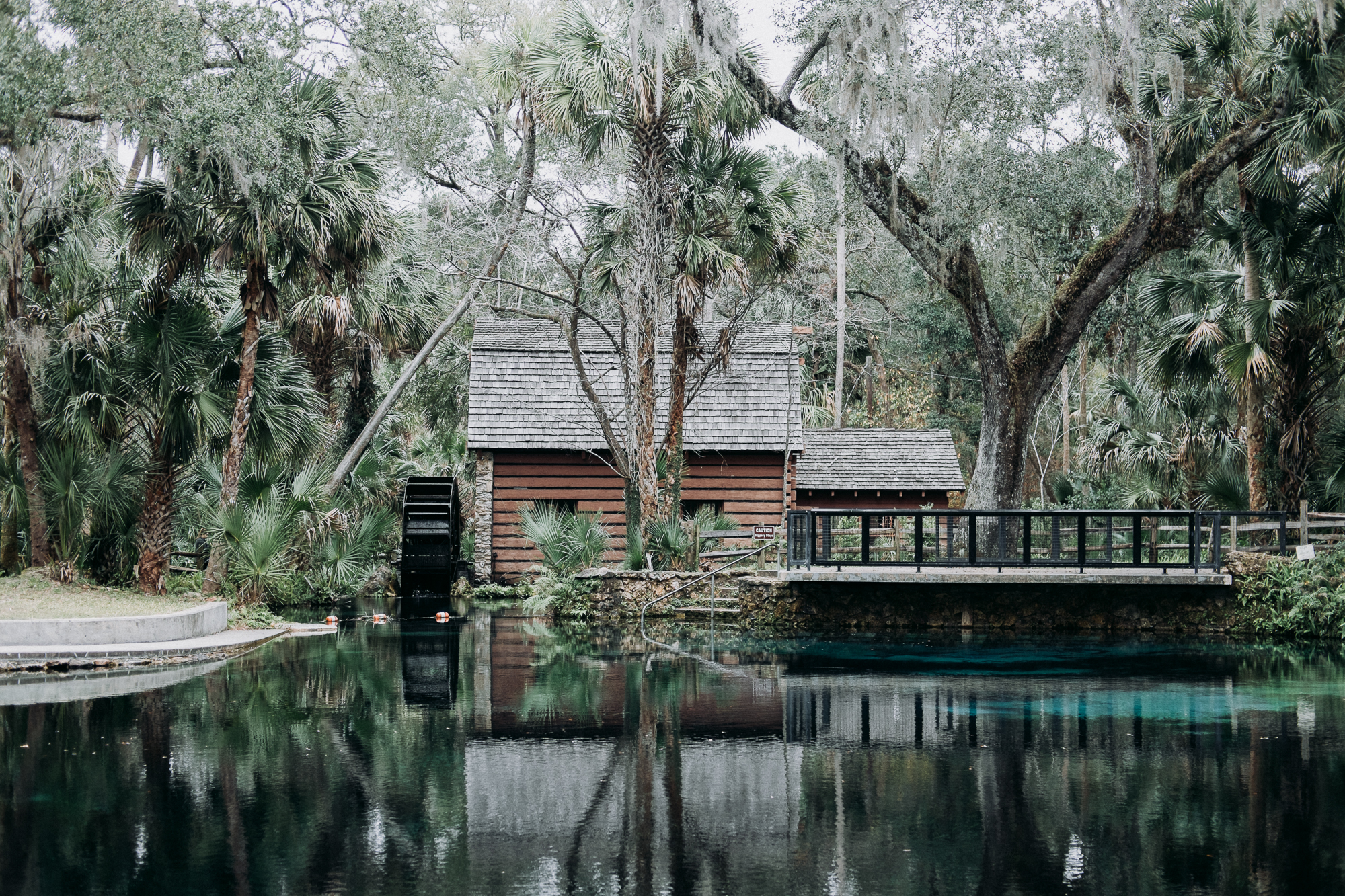 From-Coast-to-Coast-Camping-Juniper-Springs-ocala-national-forest-22-2631.jpg