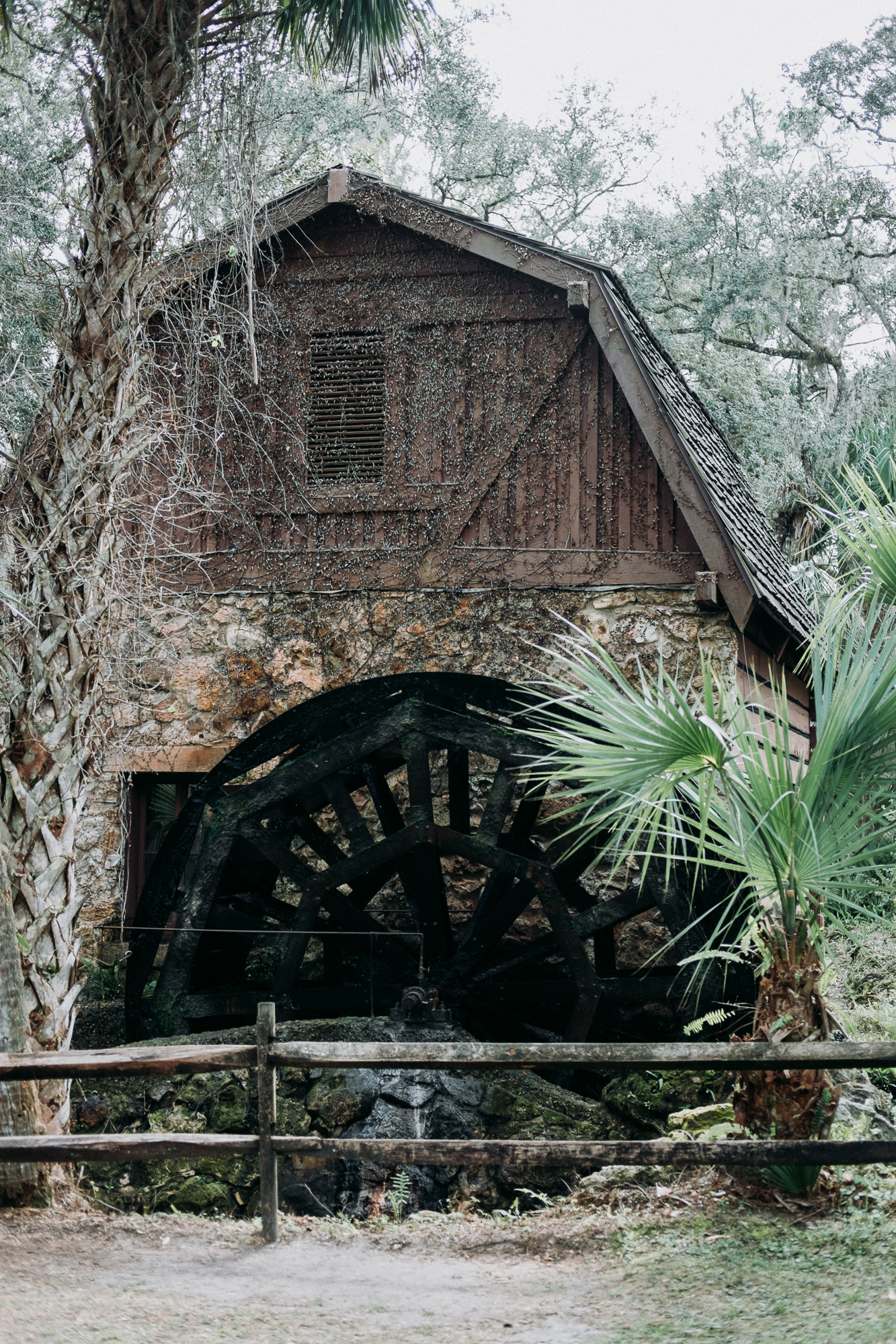 From-Coast-to-Coast-Camping-Juniper-Springs-ocala-national-forest-26-2655.jpg