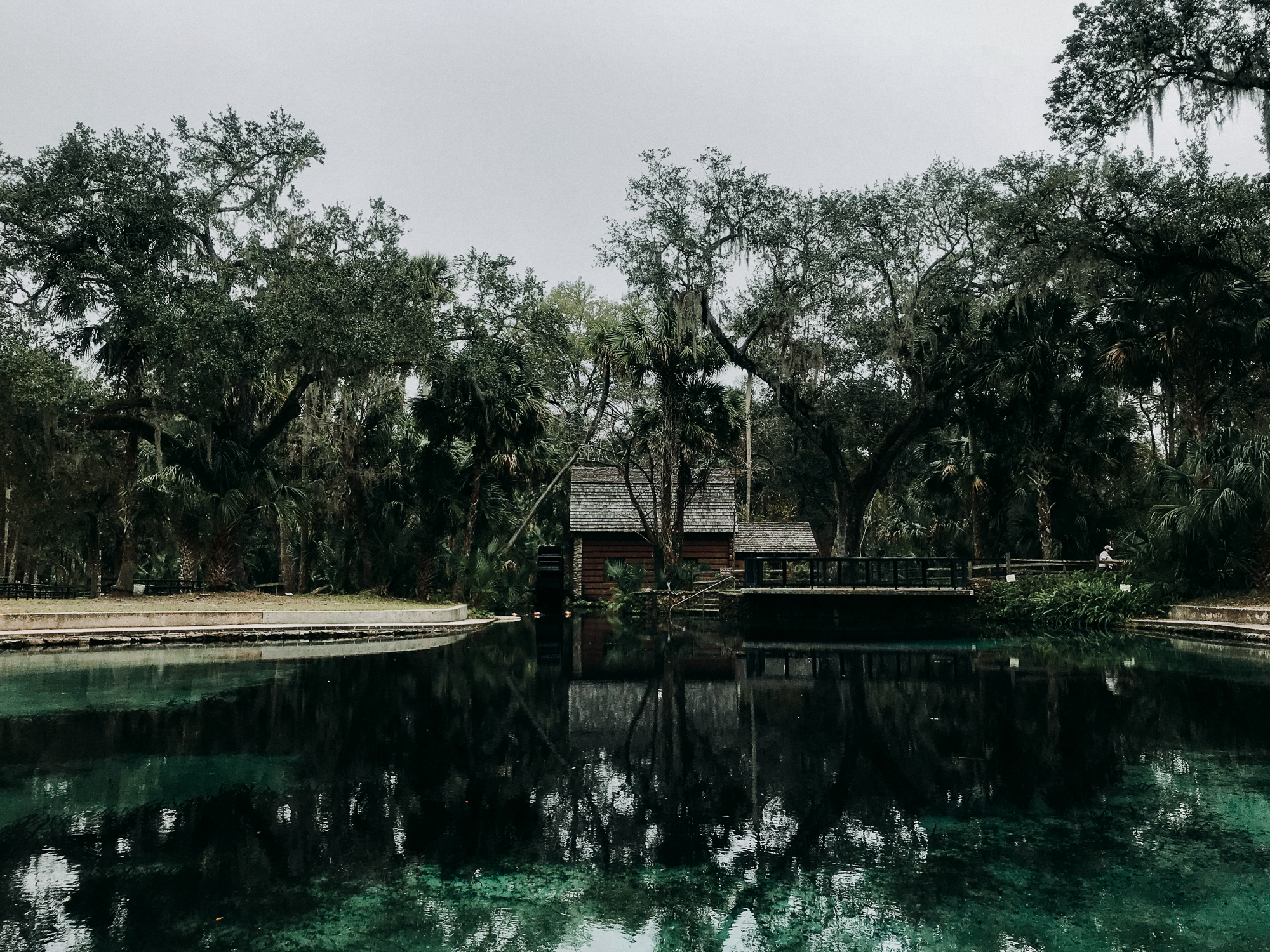 From-Coast-to-Coast-Camping-Juniper-Springs-ocala-national-forest-19-.jpg