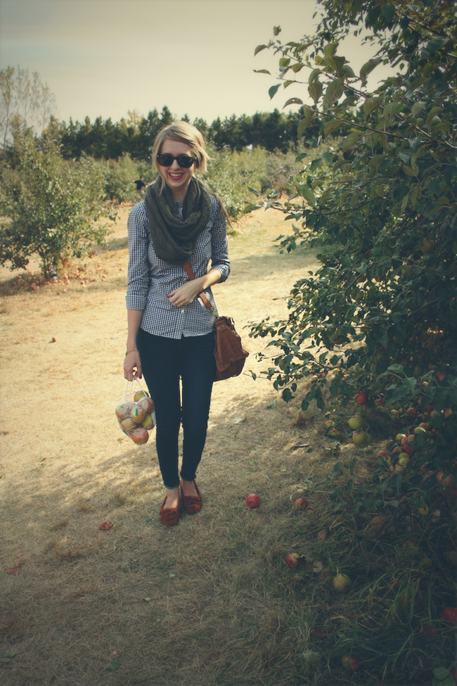 aamodt_apples_fashion_zipped3.jpg