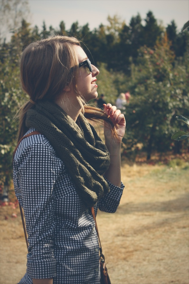aamodt_apples_fashion_zipped2.jpg