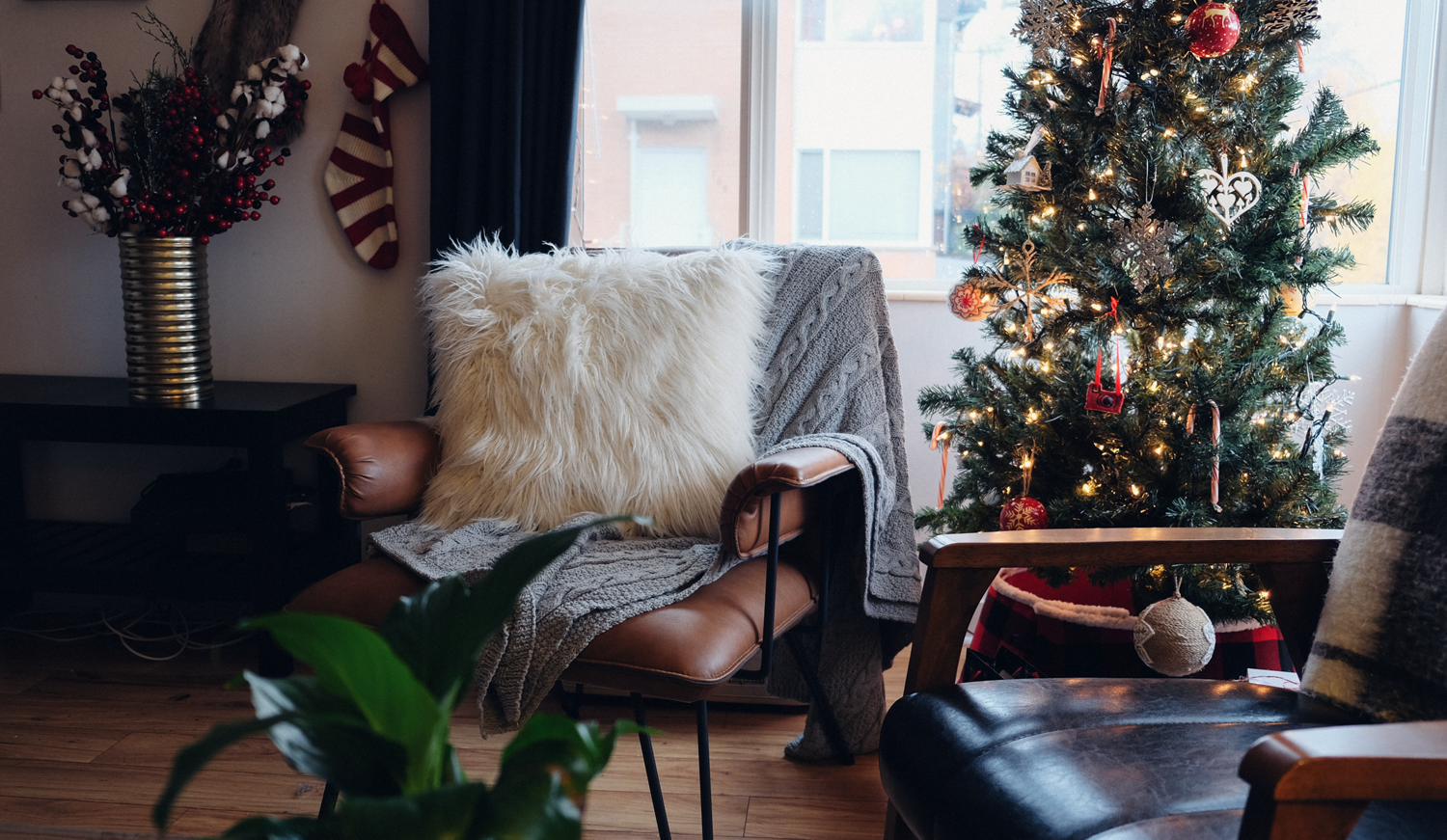 The 12 Gift Guides of Christmas: Under $50 | truelane