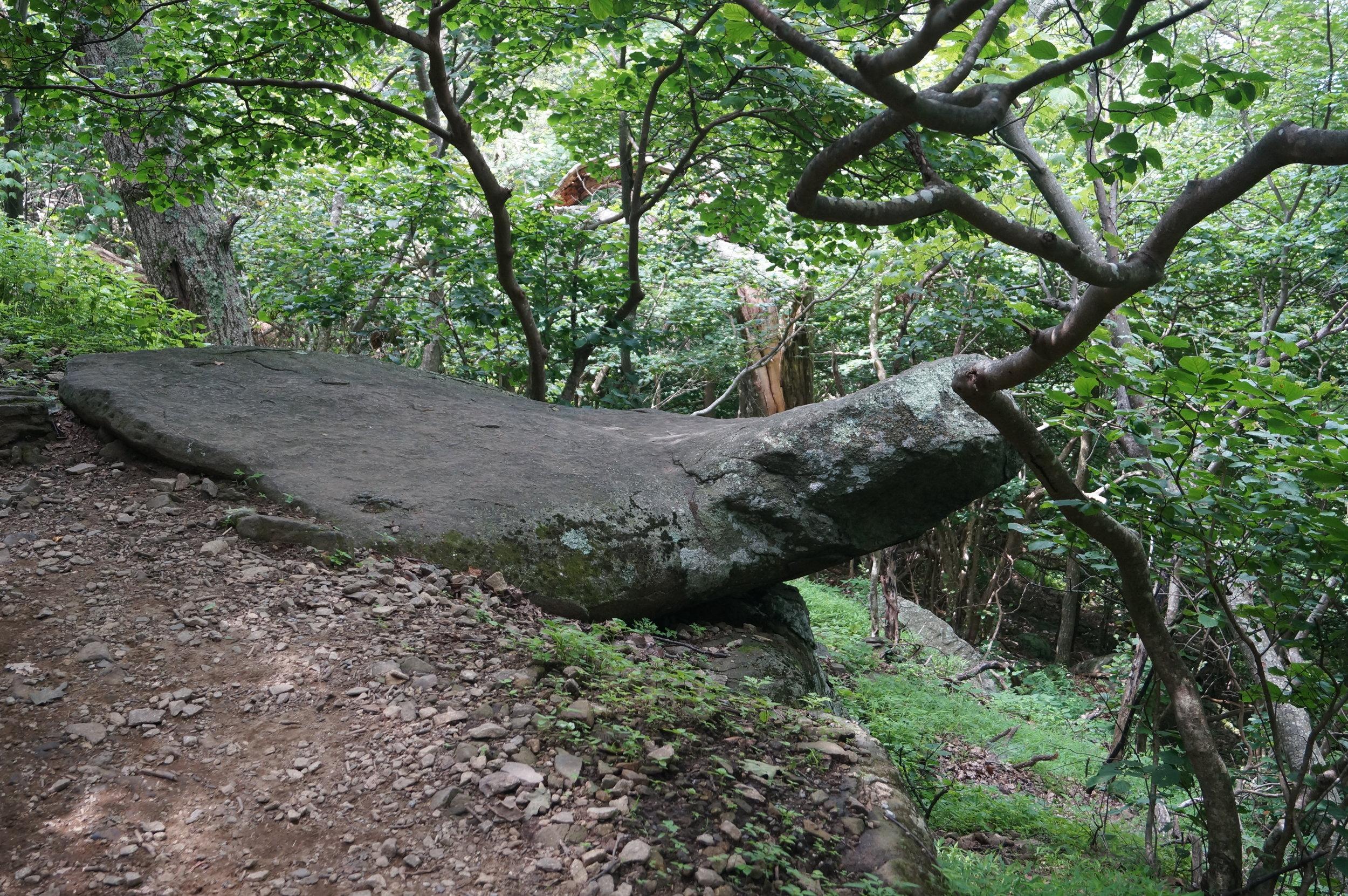 Manatee Rock