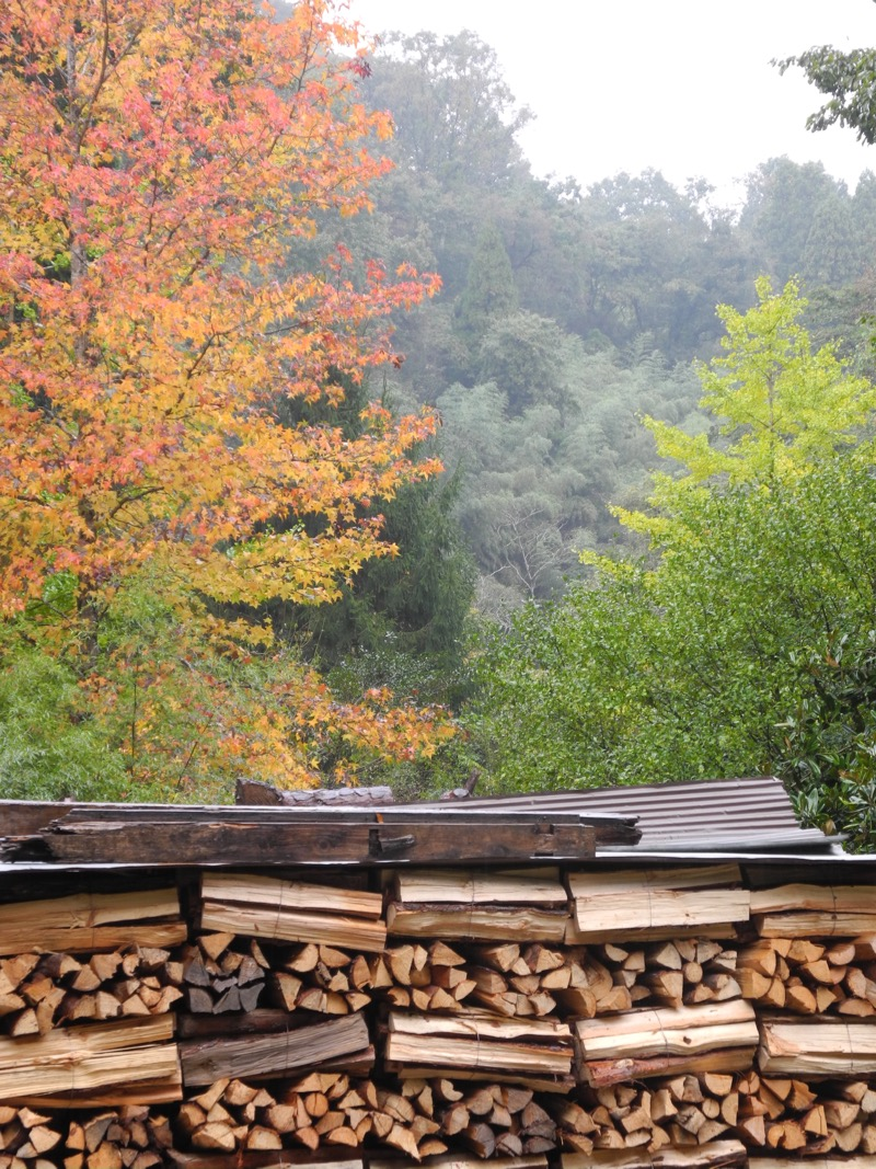 Wood pile in Ogami