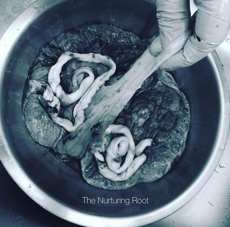 Photo Courtesy of The Nurturing Root, Carmen Calvo