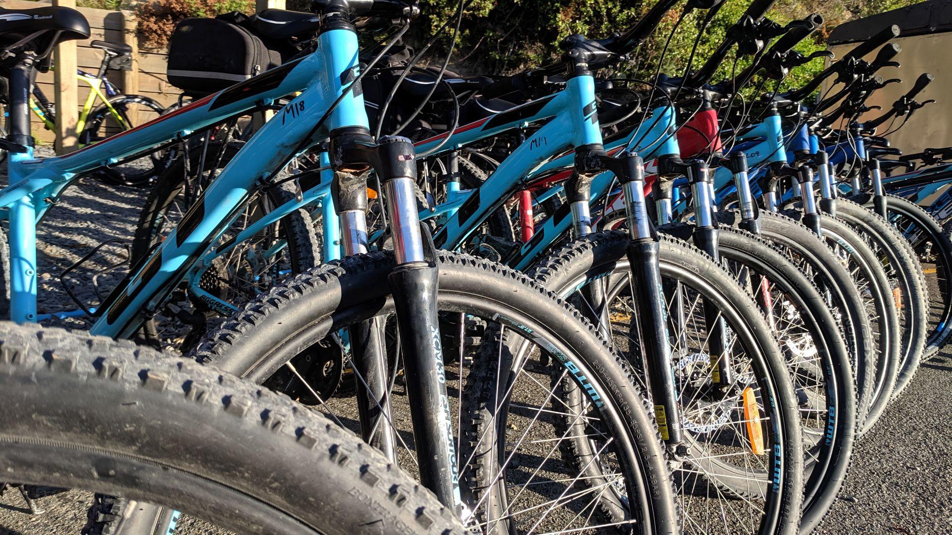 Comfort Mountain Bikes, Cycle Remutaka