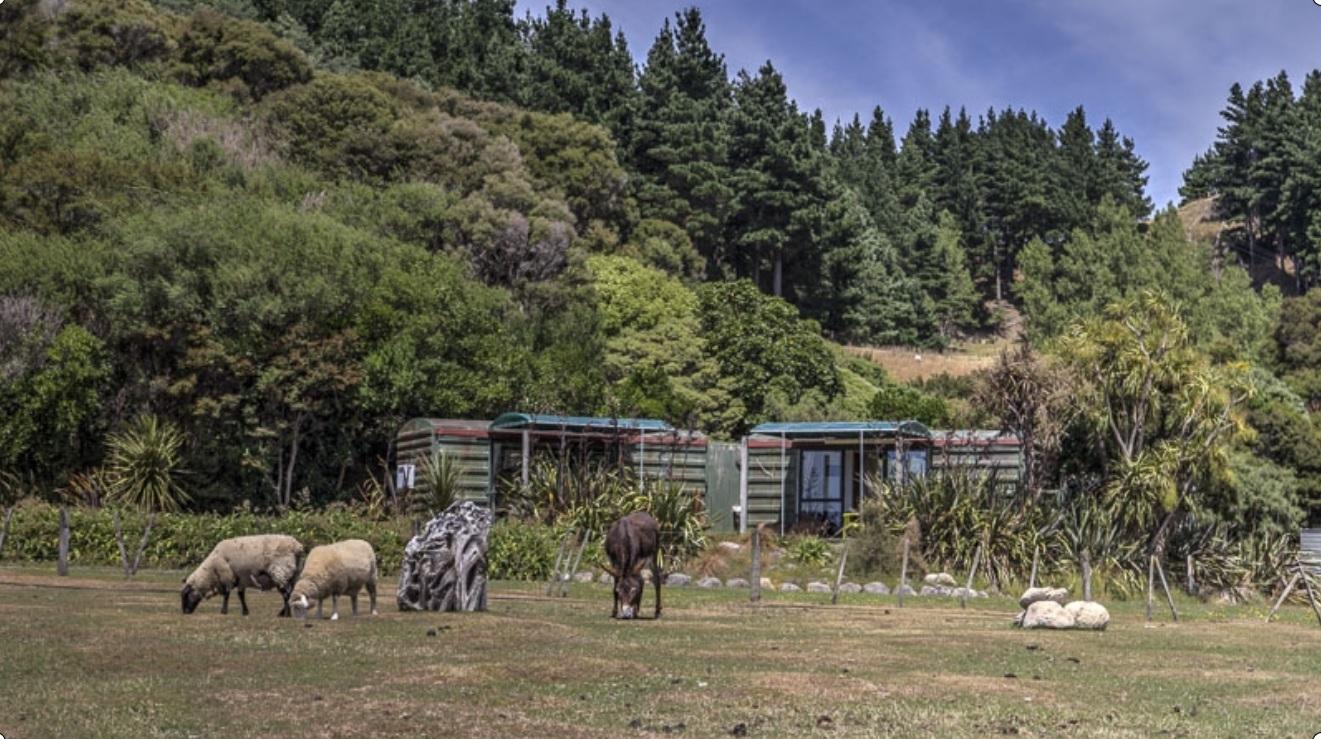 Te Rakau Cabins, Wairarapa, Remutaka Cycle Trail, Cycle Remutaka