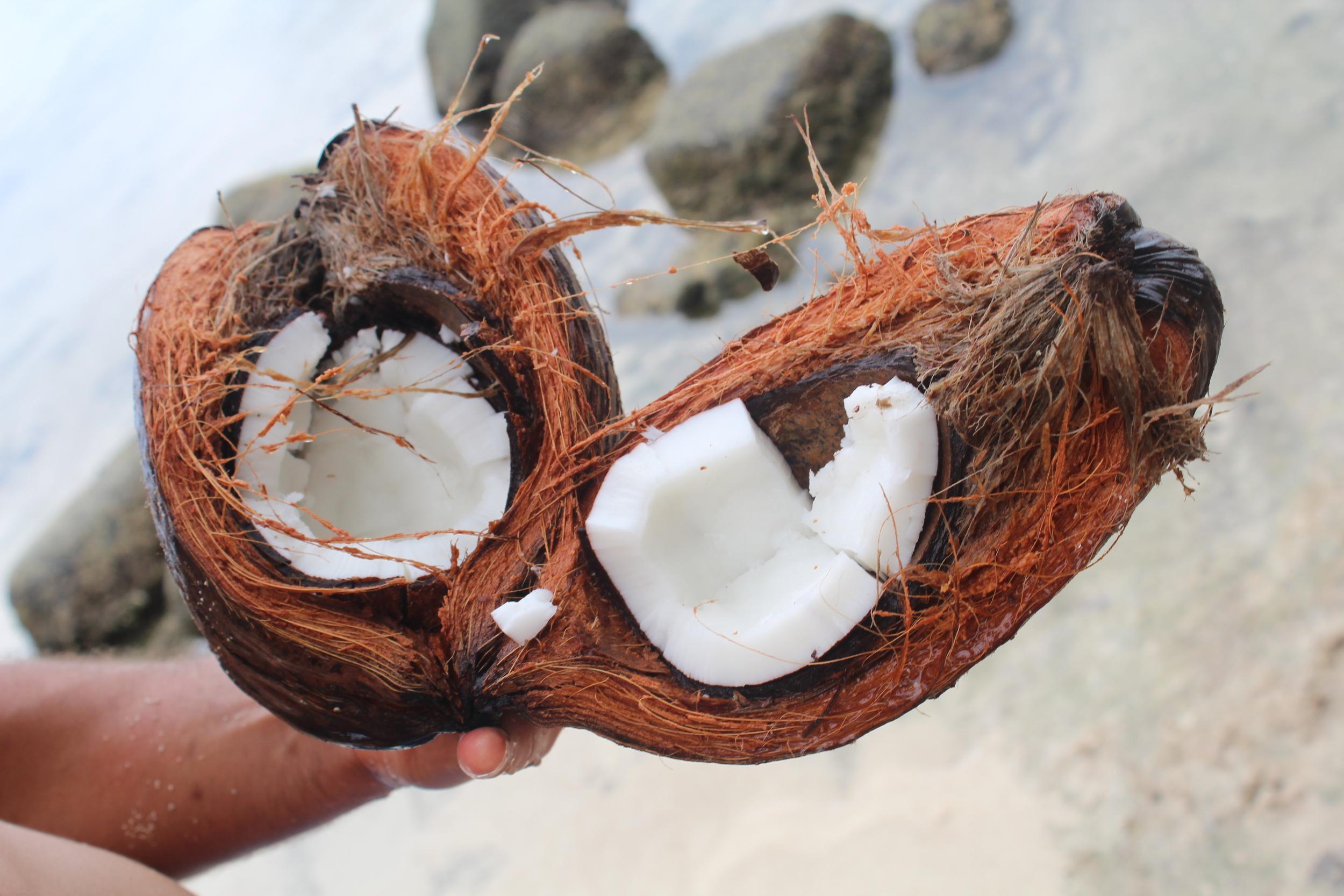Fresh Coocnut