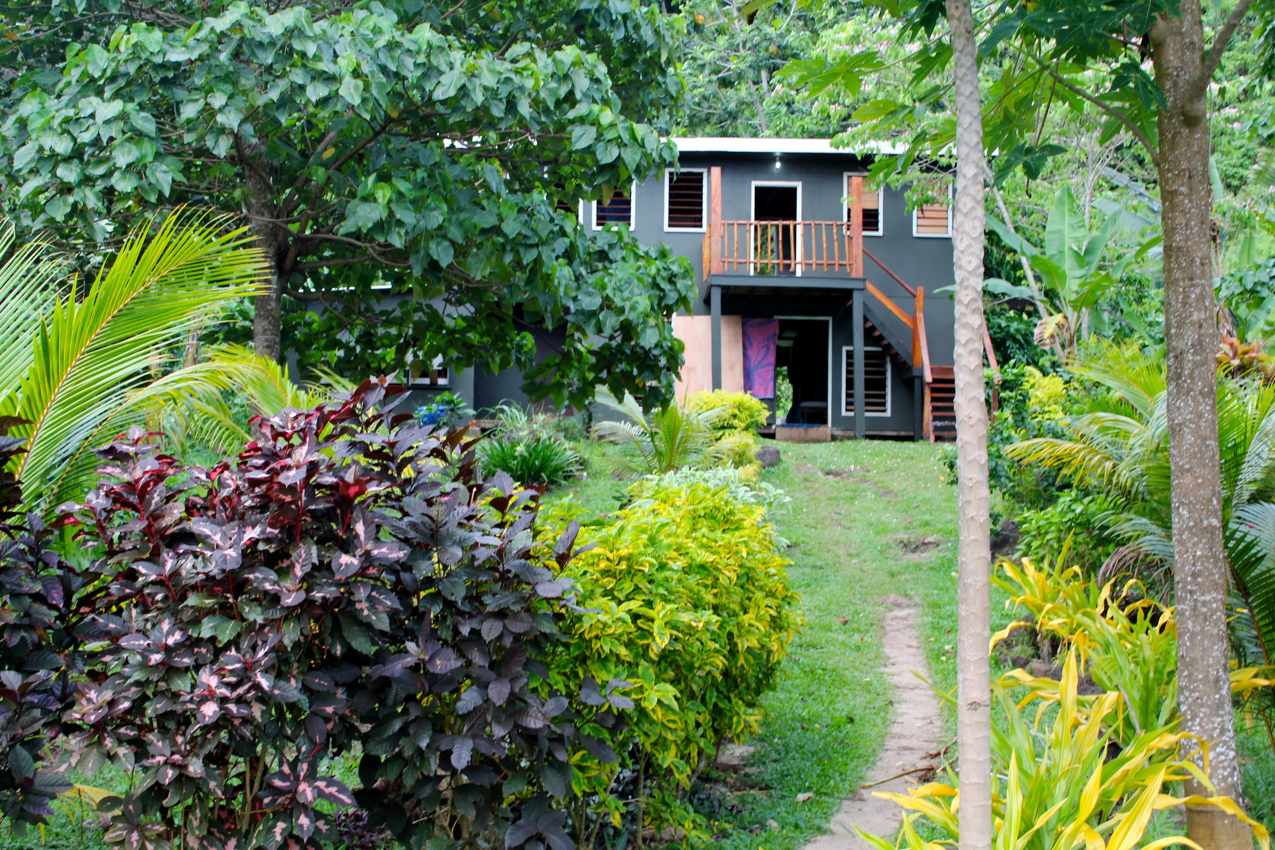 The Jungle Dorm