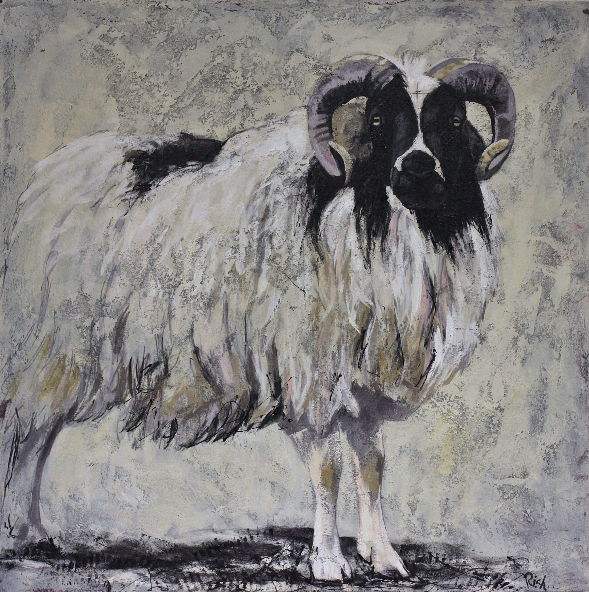 Ram  Acrylic on canvas 36x36