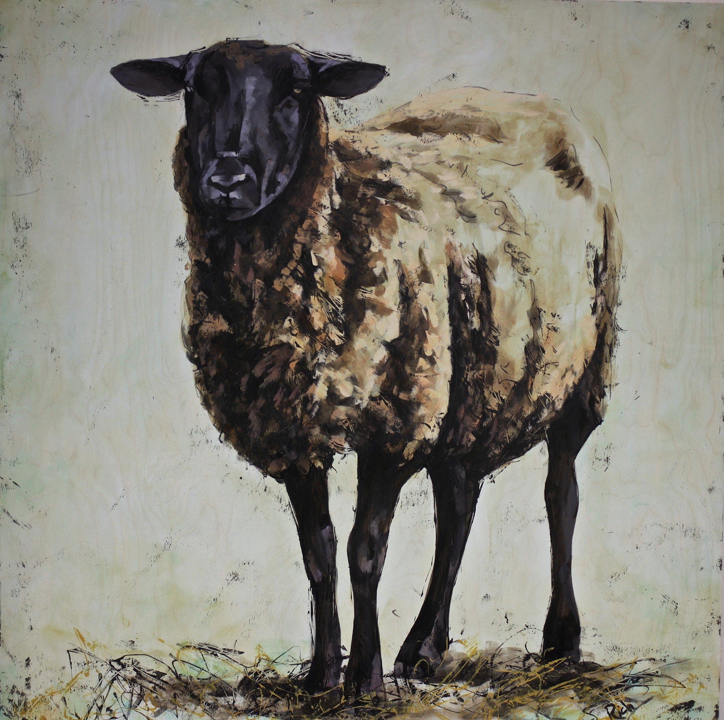 Brown Sheep  Acrylic on Birch ply 36x36