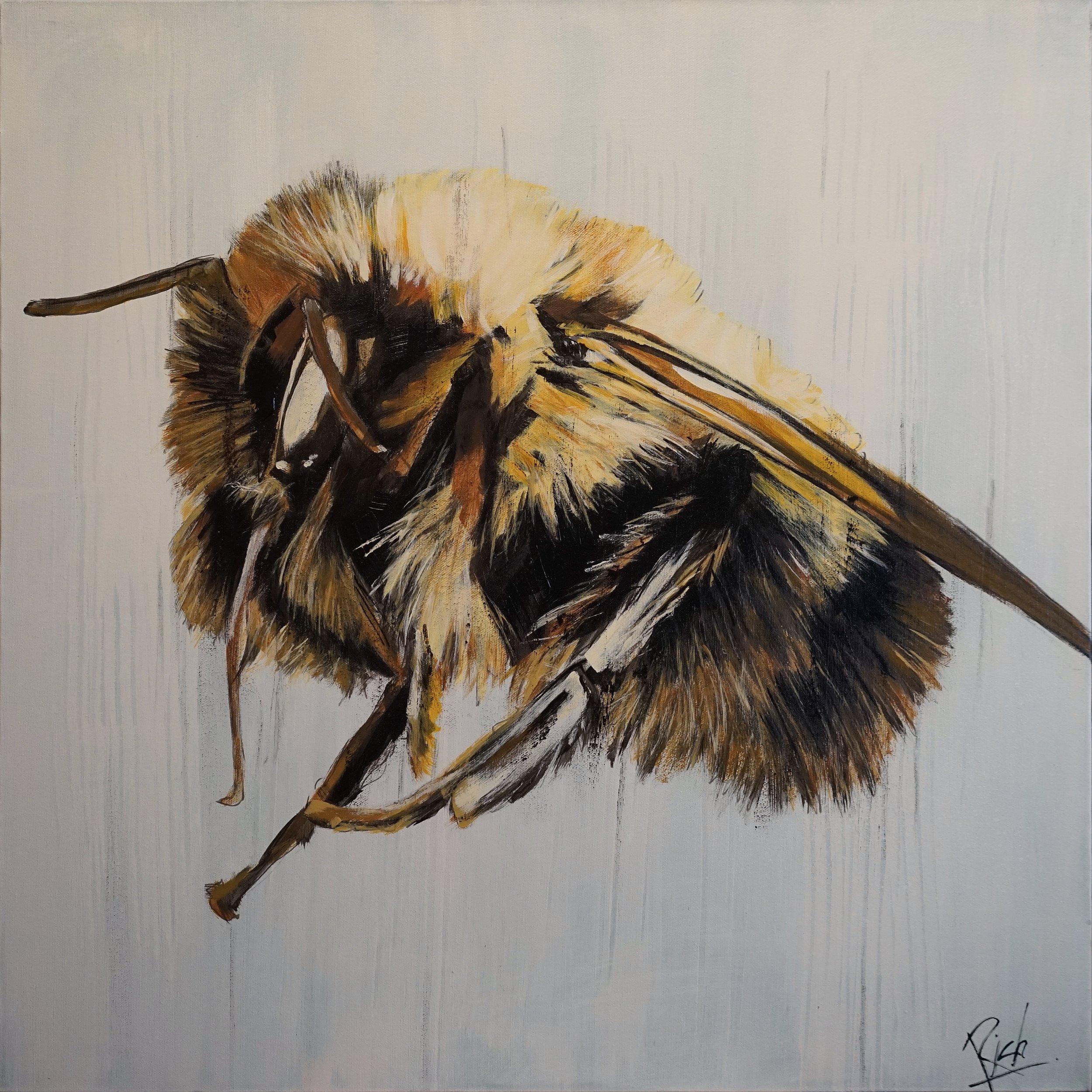Acrylic on canvas 24x24