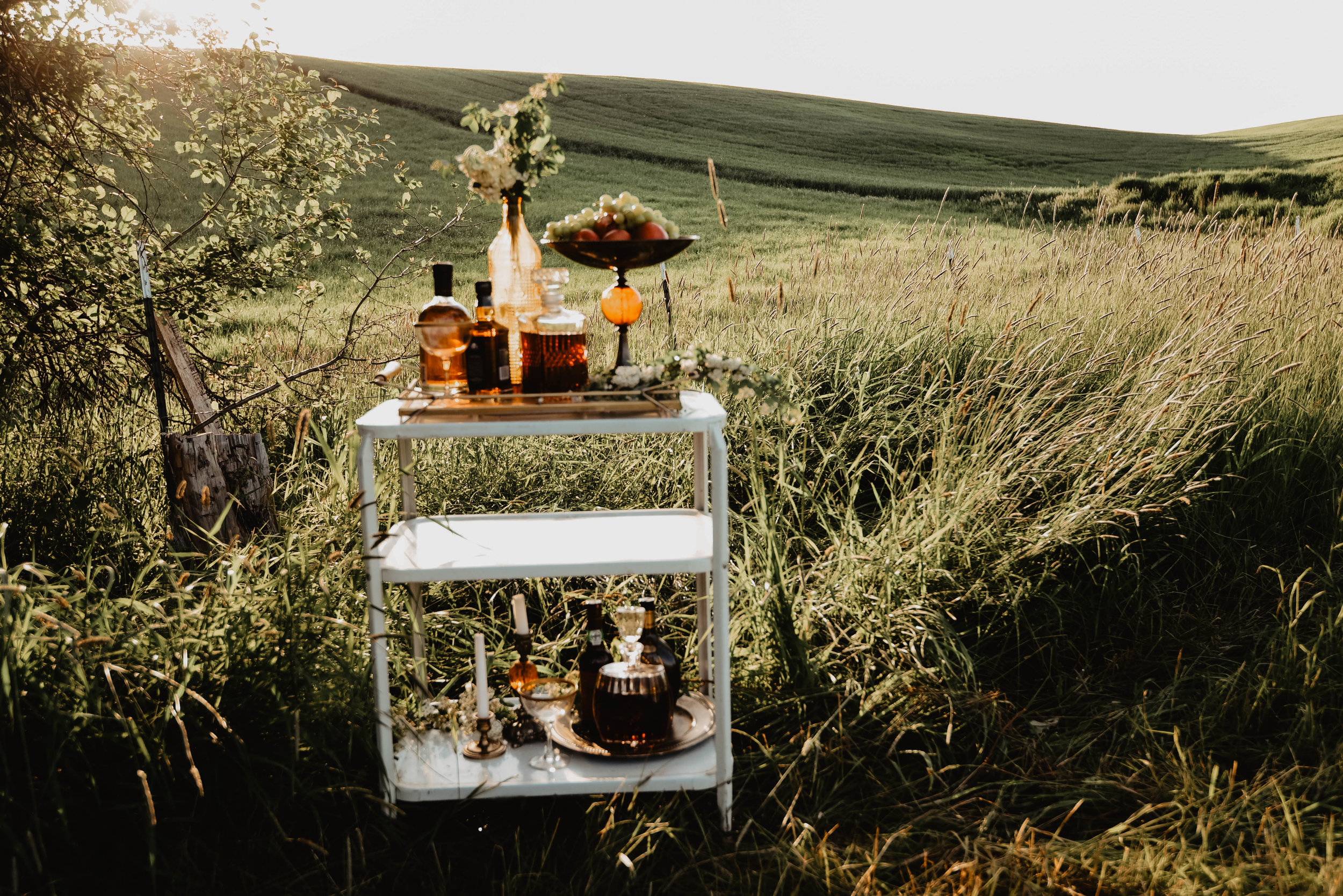 Alpaca_drinkcart-12.jpg