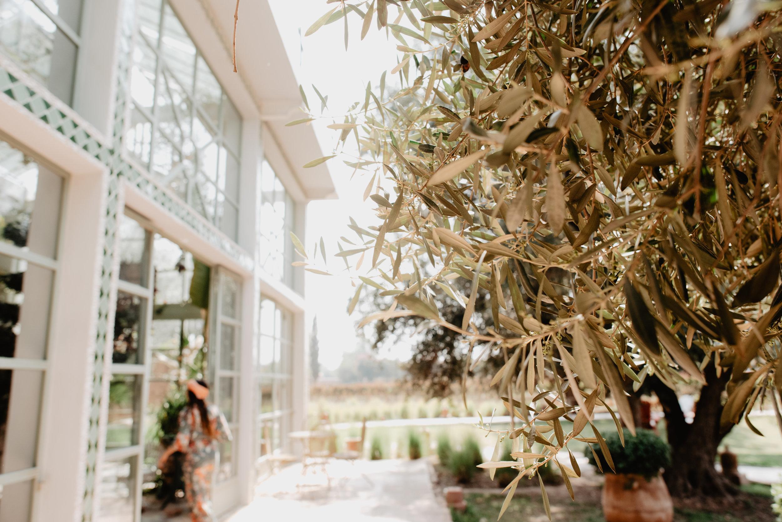 Heather Woolery Photography Idaho Pacific Northwest Wedding elopement490.jpg