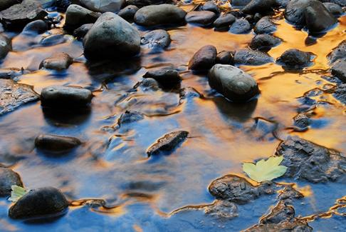 Virgin River Reflection