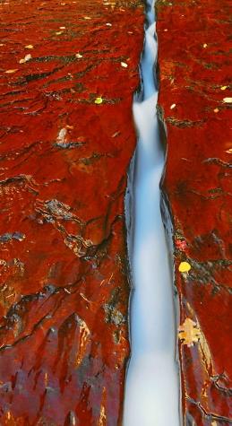 waterline.jpg