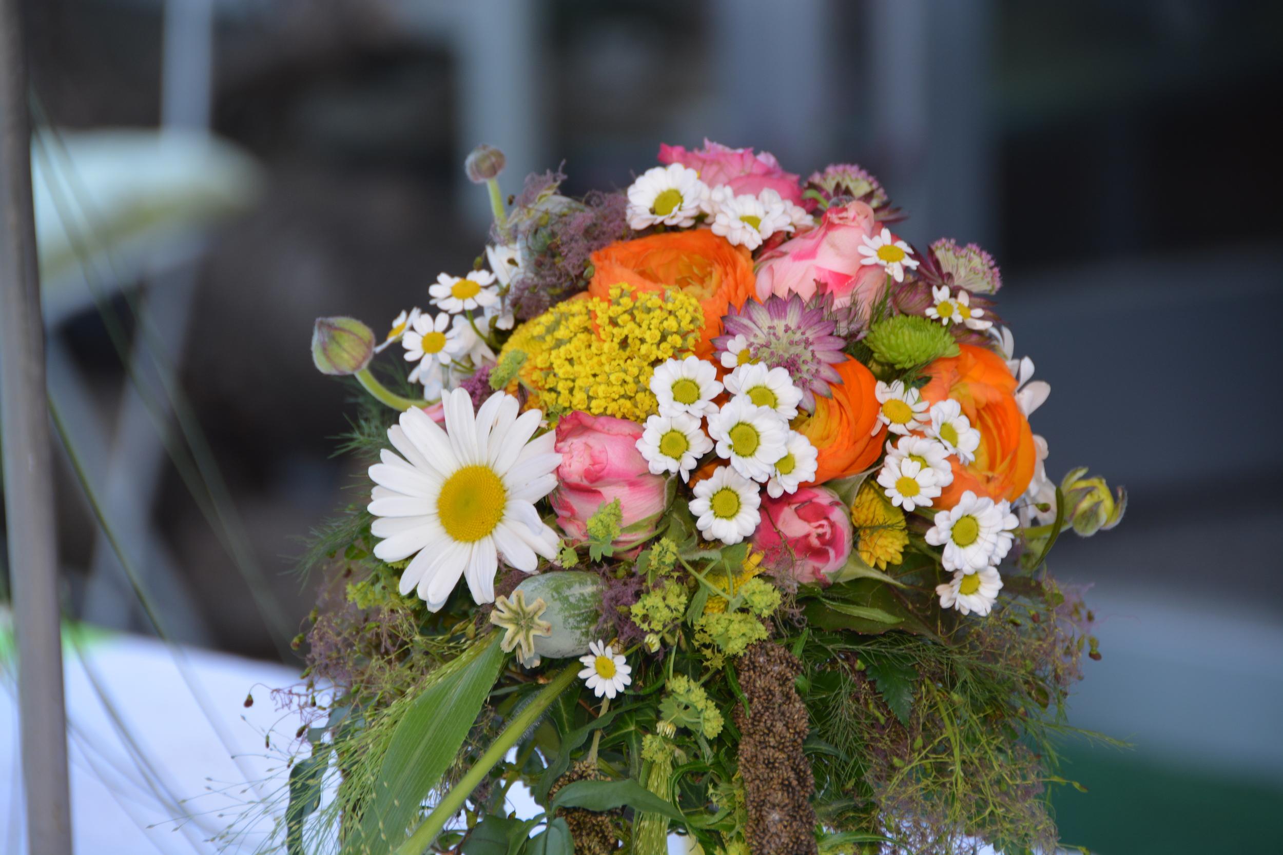 Hochzeiten22.jpg