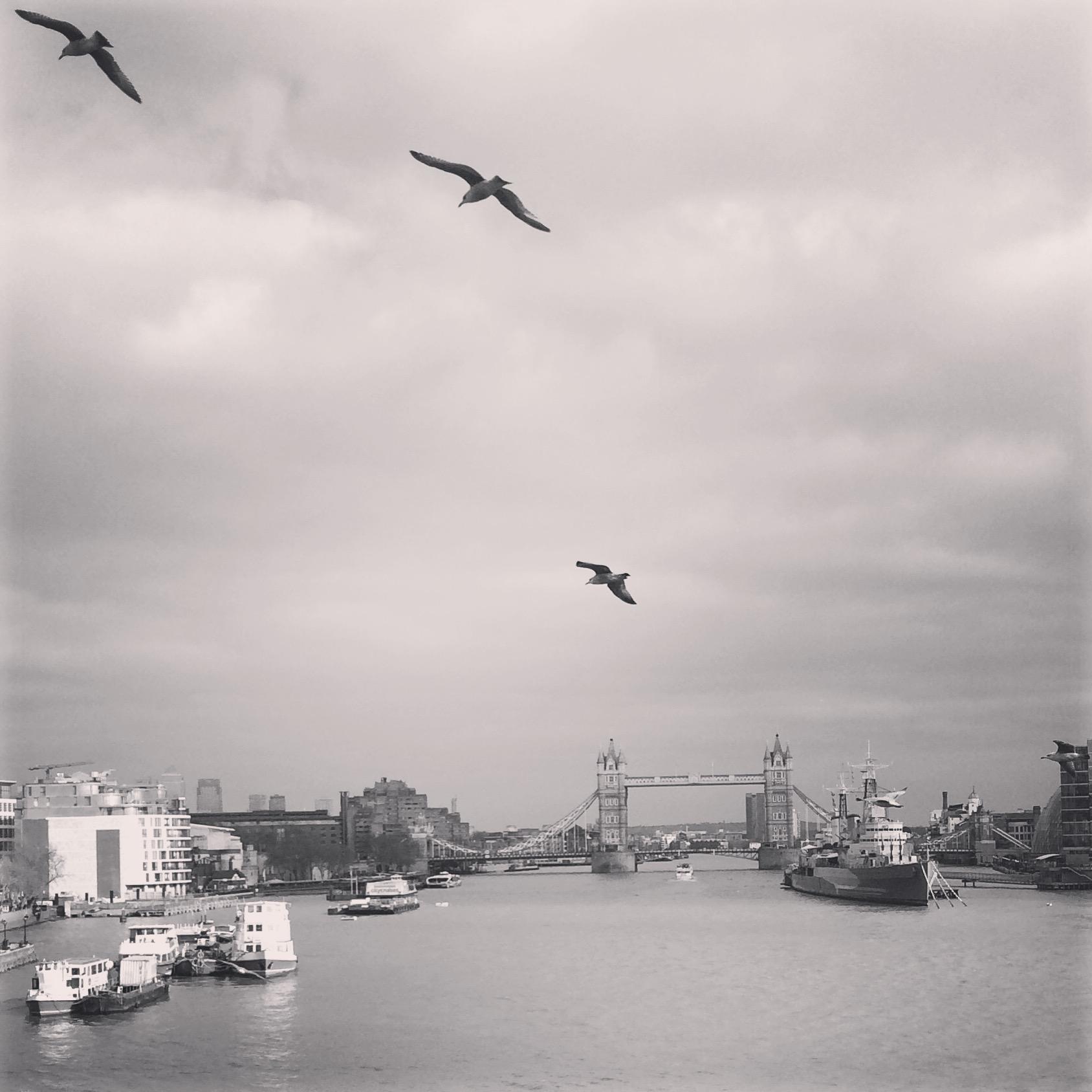 Thames River.JPG