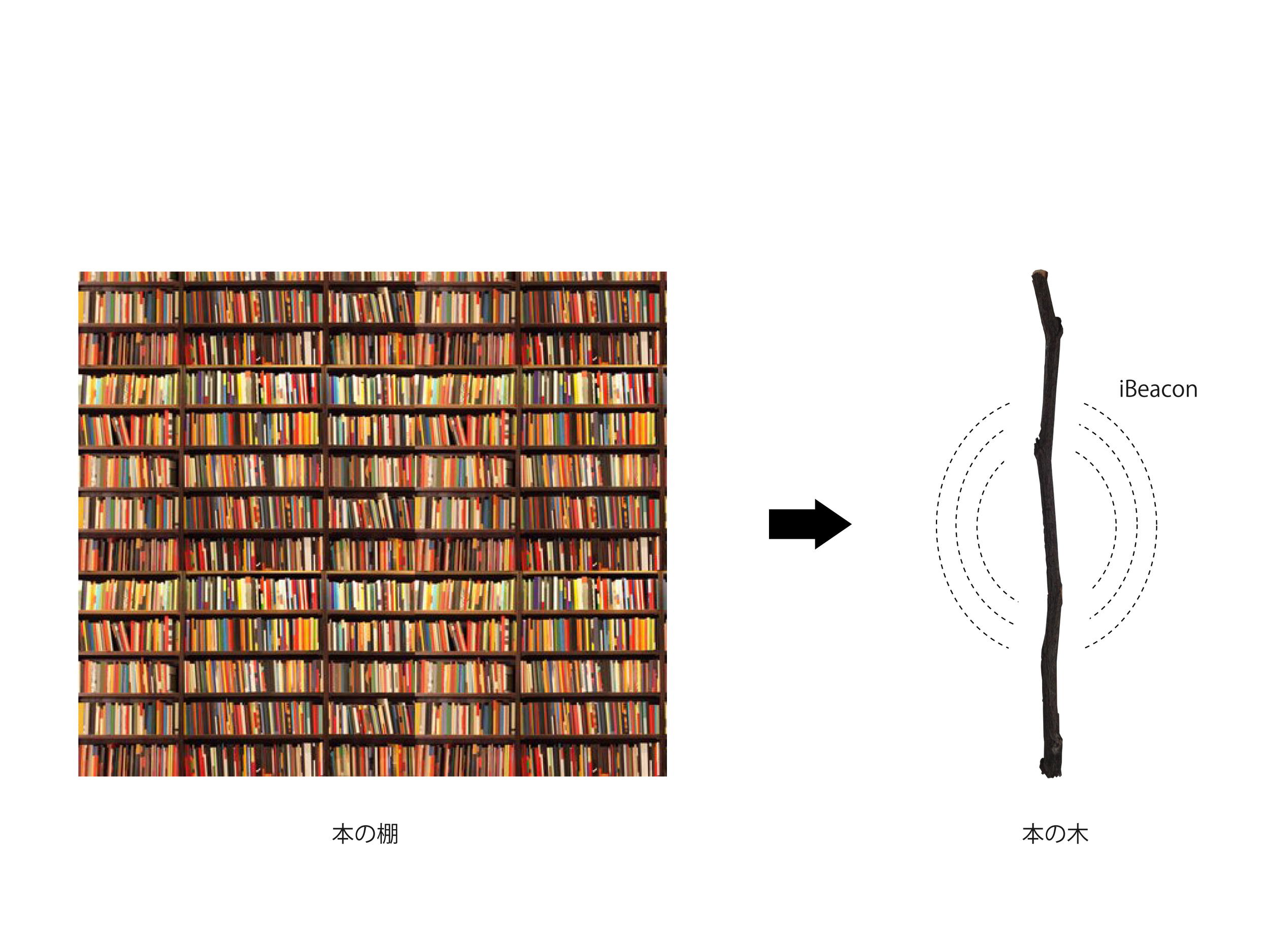 05_BookWood.jpg